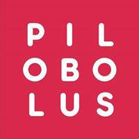 Pilobolus Dancers