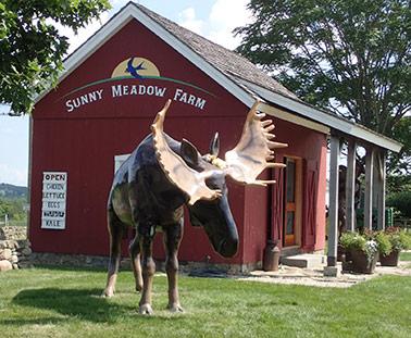 Sunny Meadows Farm, Bridgewater, CT