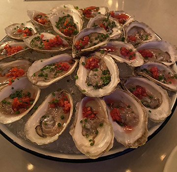 oysters - AVA Social - New York, NY - photo by Luxury Experience