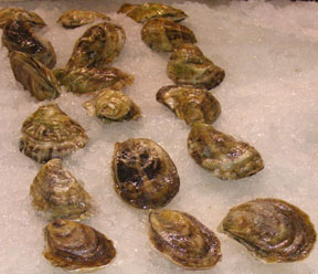 Pemaquid Oysters - Photo by Luxury Experience