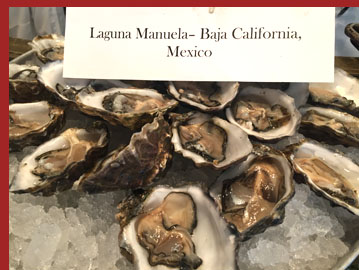Docks Oyster Bar and Seafood Bar - Laguana Manuela Oysters - Photo by Luxury Experience
