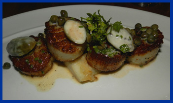 Roasted Scallops - Morello Italian Bistro, CT, USA - photo by Luxury Experience