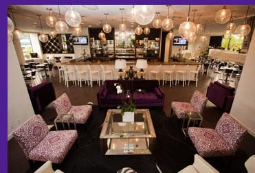 NoMa Social Restaurant - New Rochelle, NY