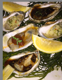 Raw Oysters - Sixty 5 on Main - Nyack, NY - photo by Luxury Experience