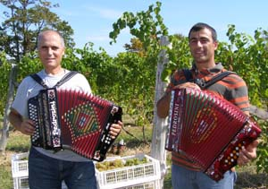 Rocha Family playing music at Gouveia Vineyard - Photo by Luxury Experience