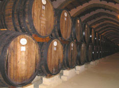 Marsala Wine Barrels at Cantine Florio