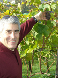 Domaine Zweifel - The Art of Making Swiss Wine - Edward F. Nesta Picking Grapes